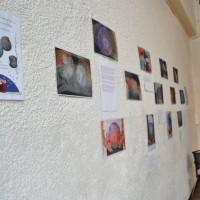expo-barbouille1 JDD2013