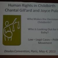 humanright1 JDD2013